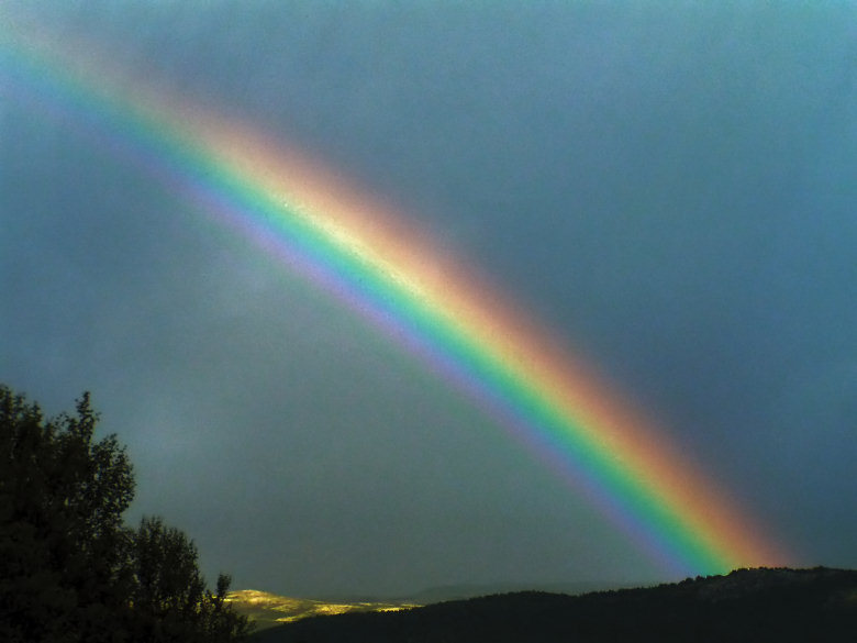 Le energie sottili la nascita del cleanergy e della t e v - Immagini di gufi arcobaleno ...